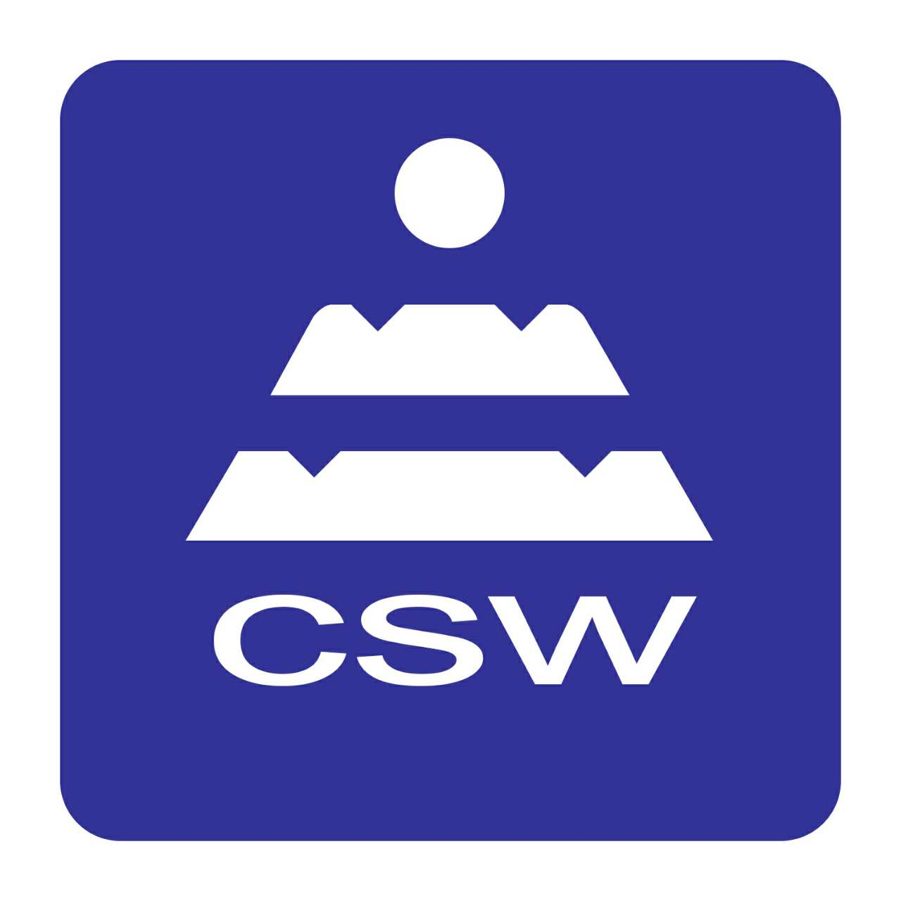 CS Wear Resistant Material Co., Limited Logo
